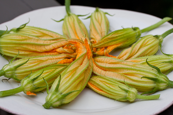 Squash Blossoms From Jolley Farms To My Table!