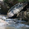 Chattooga River (1 of 1)