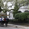 Charleston Horse Carriage