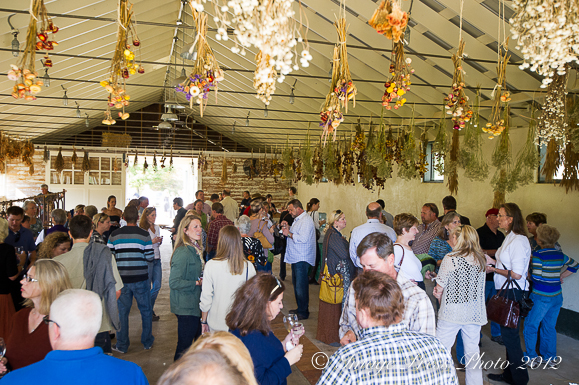 Guests enjoying appetizers and champagne in the barn