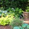Garden-14