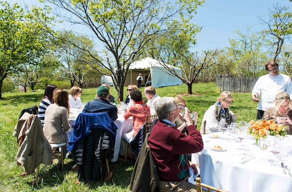 Lunch in Jefferson's orchard