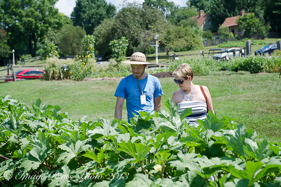 travel, heirloom gardens, Old Salem