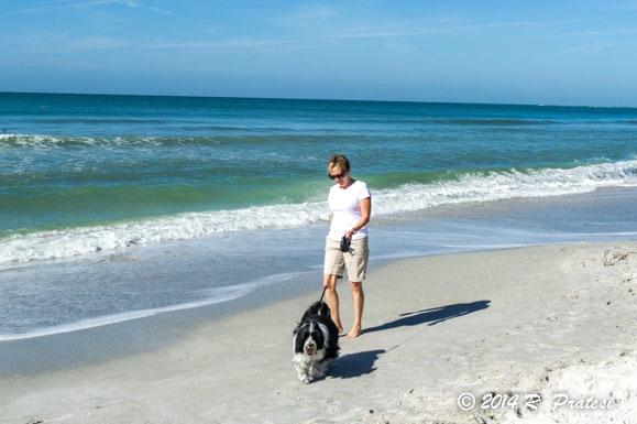 A walk along the beach with Beamer
