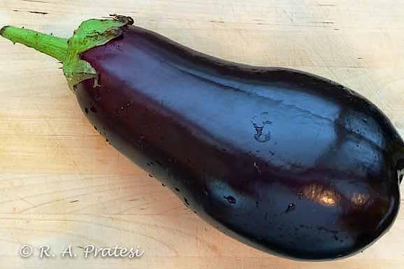 Beautiful fresh eggplant