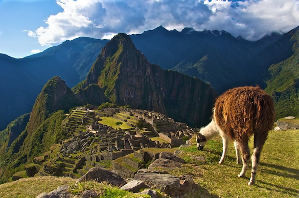 Machu Picchu (Photo courtesy of Ronald Vienneau)