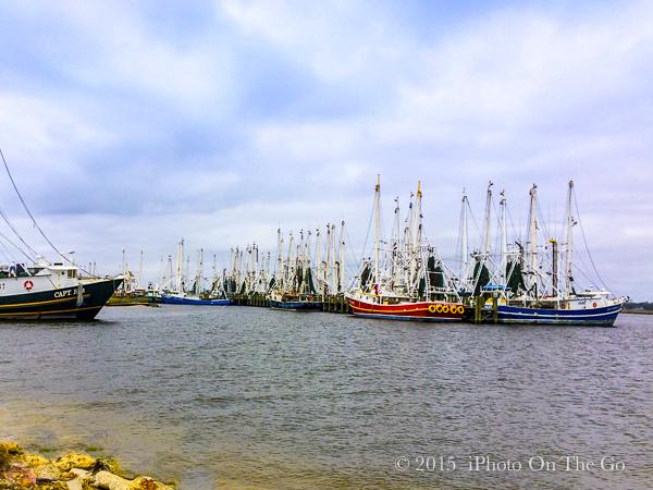 Shrimping boats