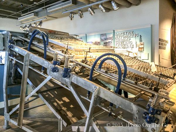 The impressive shrimp processing machine
