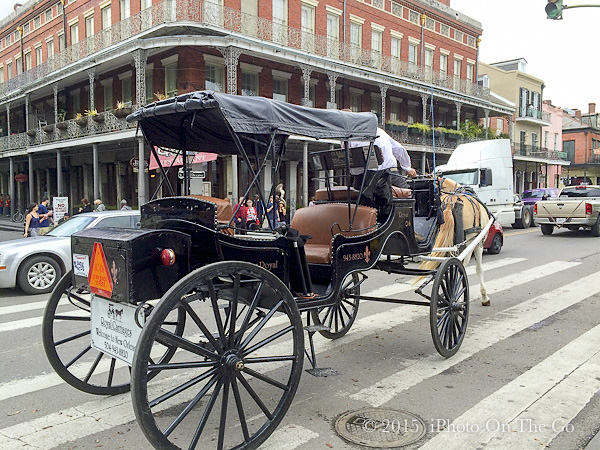 Horse-drawn carriages along Canal Street