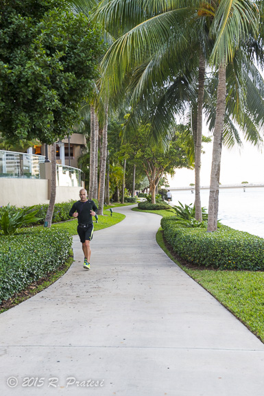 Walking trails along the bay