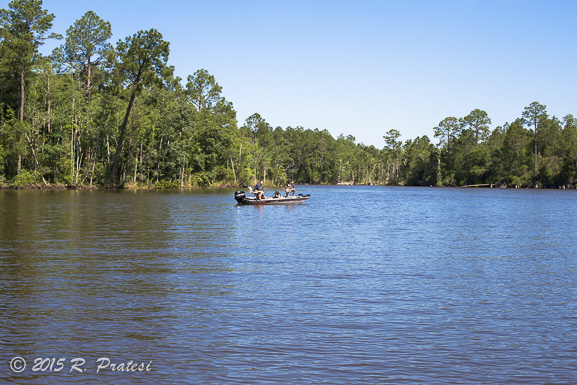 Fishing on the Intracoastal Waterway