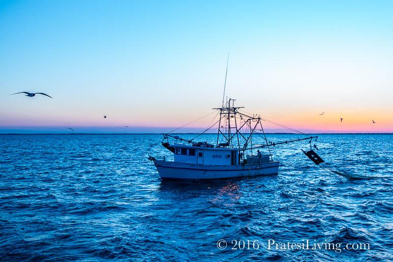 Shrimping boat (1 of 1)
