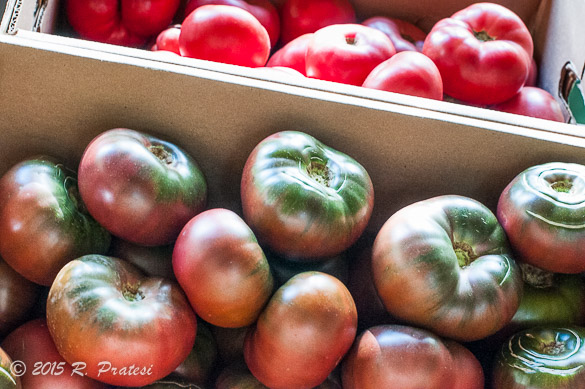 Cherokee Purple Tomatoes from Jolley Farms in Canton, NC
