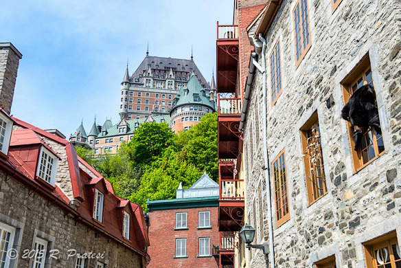 View looking up at Frontenac