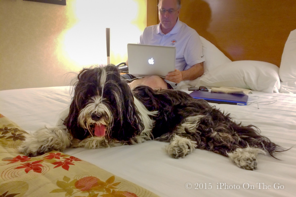 Beamer likes to travel, too