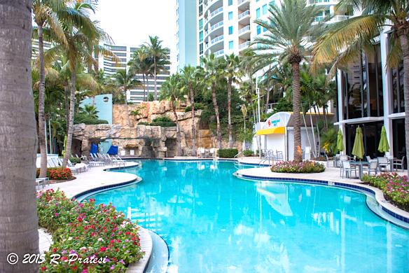 The lagoon style pool