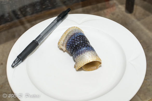 The seasoning mixture is rolled up in the fish - You can see how small this filet is