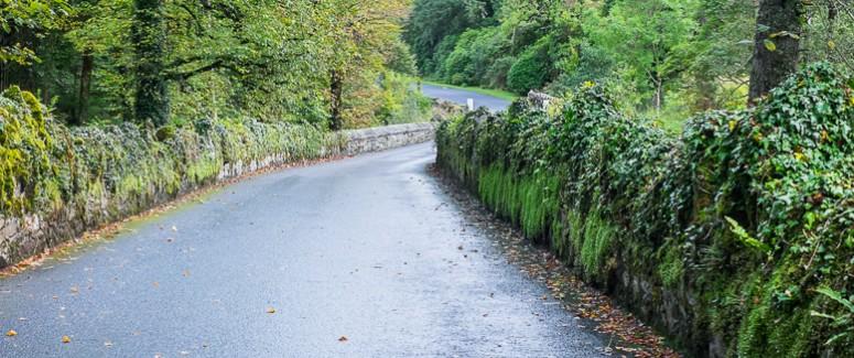 Narrow Roads of Ireland (1 of 1)
