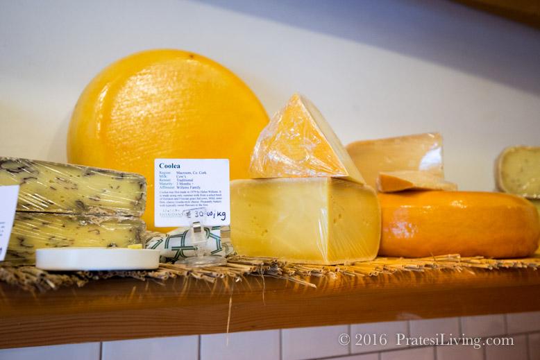 So many cheeses to taste!