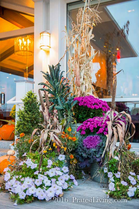 Celebrating fall at Inn By The Sea