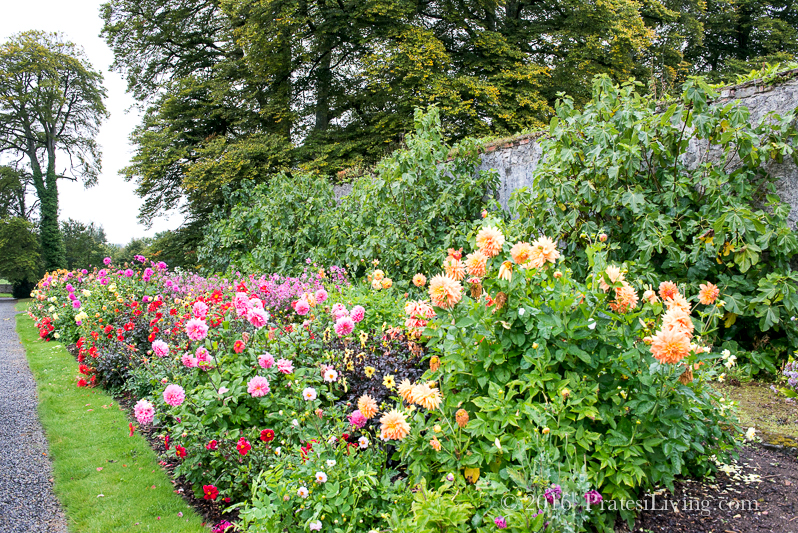 The gardens are captivating