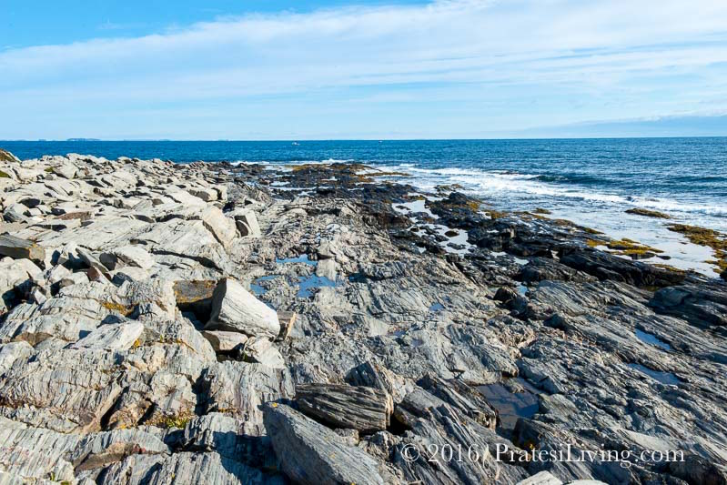 The rocky coastline of Maine
