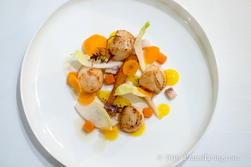 Scallops with orange, carrot, chicory, and smoked eel