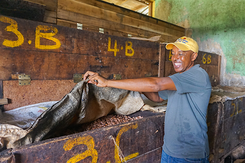 Cacao processing