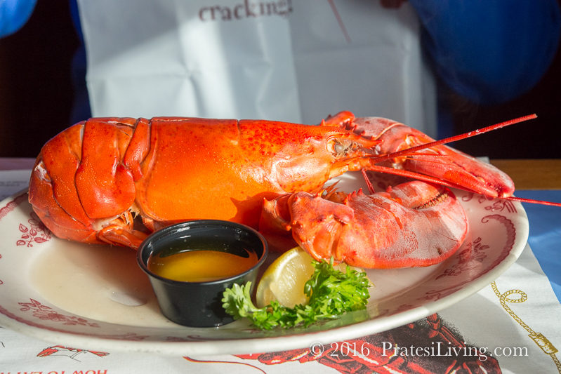 Steamed lobster at Mabel's Crab Claw - Kennebunkport