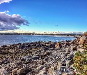 Shoreline of Maine