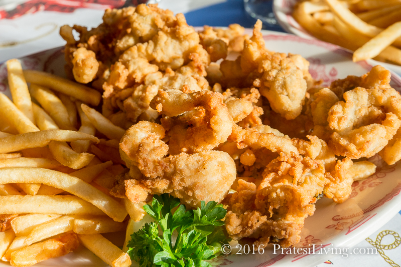 Fried clams at Mabel's Lobster Claw - Kennebunkport, ME