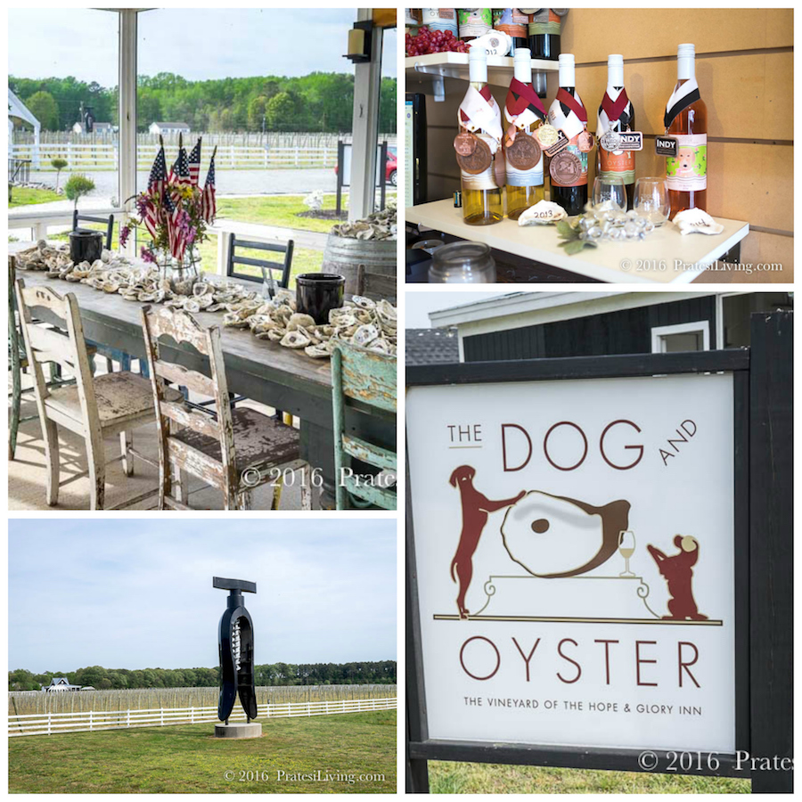 The Dog and Oyster Winery
