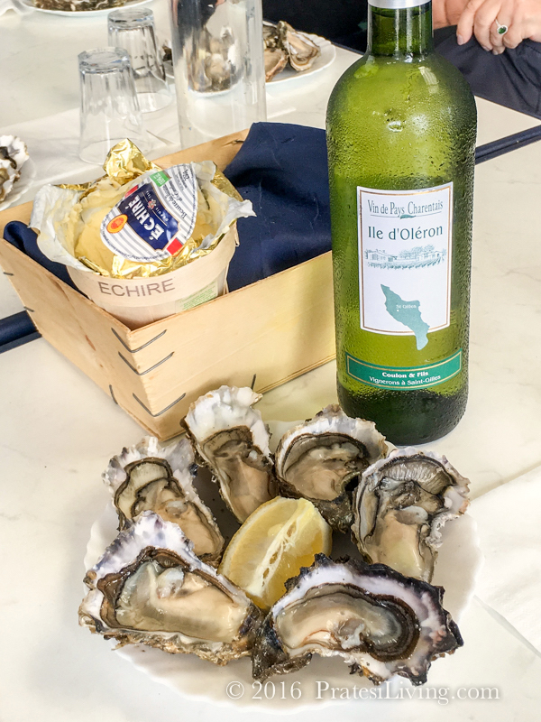 Marennes oysters in France