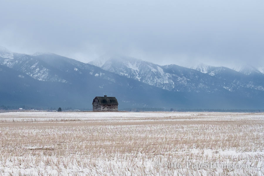 Barn in the distance