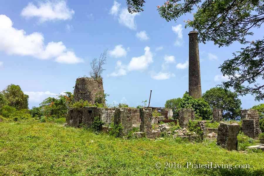 Hamilton Estate ruins