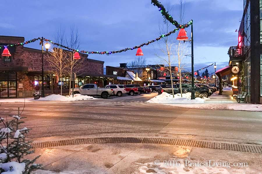 Whitefish at night